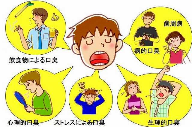口臭の原因表