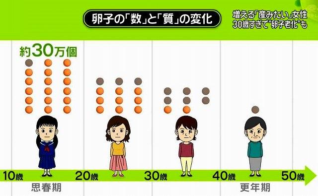 卵子の質と数