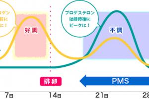 pms-jiki